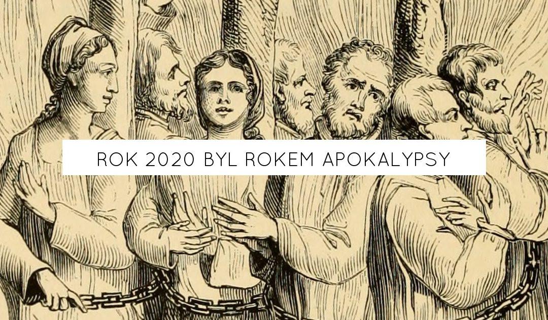 Rok 2020 byl rokem apokalypsy